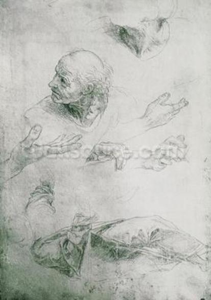 Studies for the Figure of Bramante (1444-1515) (pencil on paper) (b/w photo) mural wallpaper