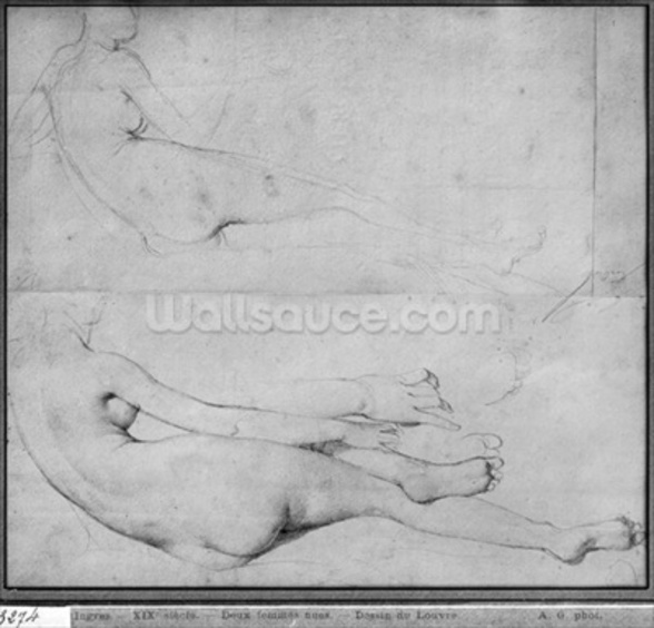 Studies for The Grande Odalisque (graphite on paper) (b/w photo) (see also 233243) wall mural