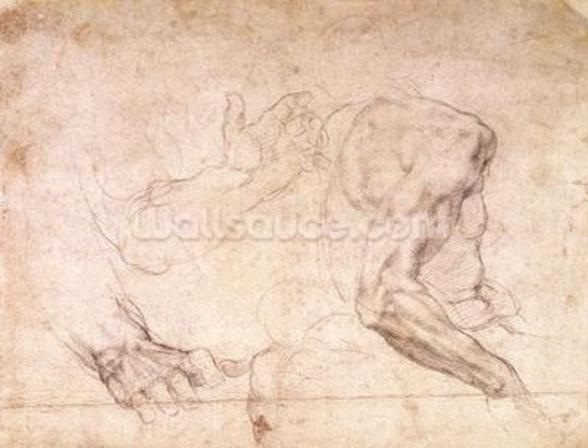 Studies of hands and an arm (black chalk on paper) (verso) mural wallpaper
