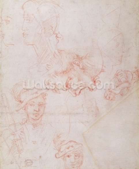 Studies of heads, 1508-12d(red chalk on paper) (verso) wall mural