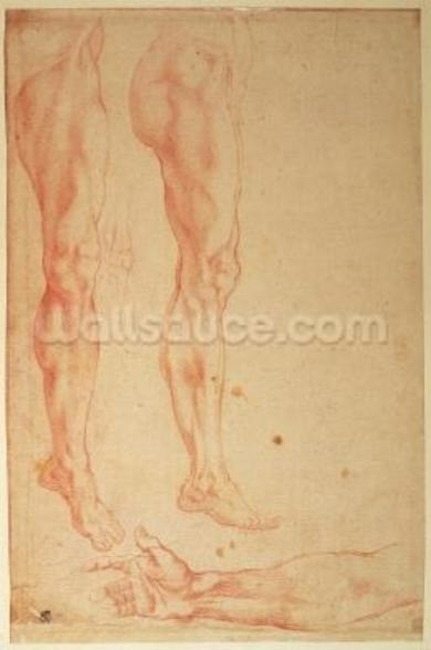Studies of Legs and Arms (red chalk on paper) wallpaper mural