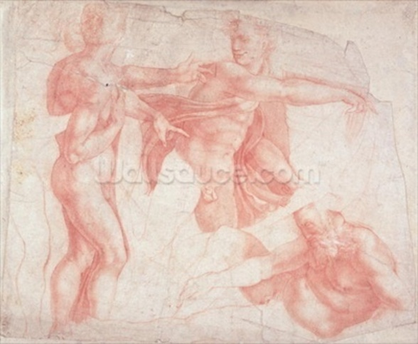 Studies of Male Nudes (red chalk on paper) wall mural