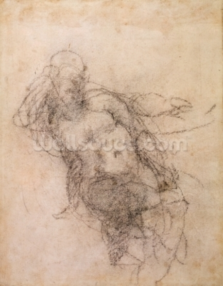 Study for Noah in The Drunkenness of Noah, 1508-12 (charcoal on paper) (recto) wall mural