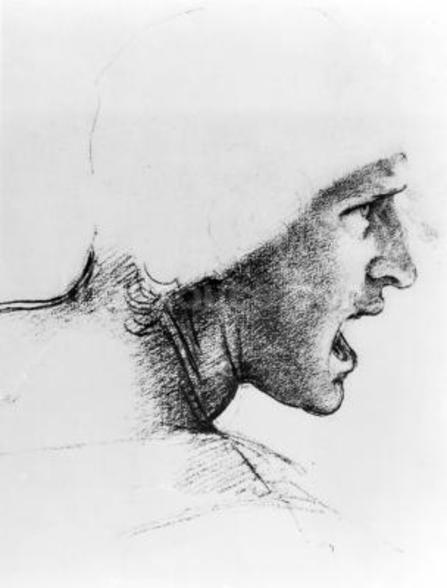 Study for the head of a soldier in The Battle of Anghiari, c.1504-05 (red chalk on paper) wall mural