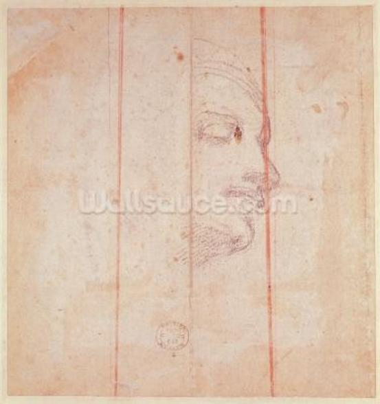 Study for the Head of the Libyan Sibyl (black chalk on paper) (verso) wallpaper mural