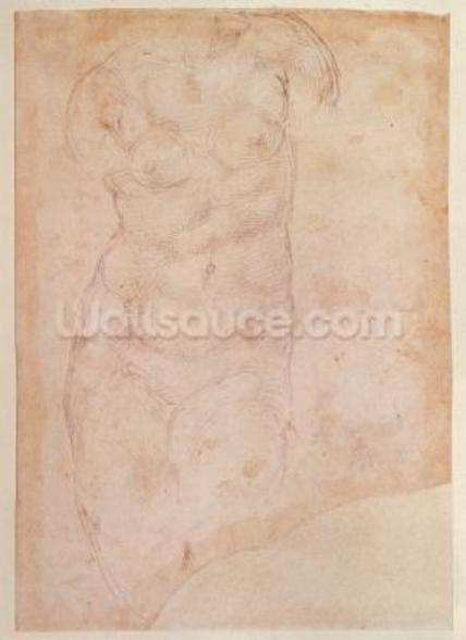 Study of a Female Nude (black chalk on paper) mural wallpaper
