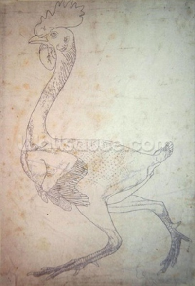 Study of a Fowl, Lateral View, from A Comparative Anatomical Exposition of the Structure of the Human Body with that of a Tiger and a Common Fowl, 1795-1806 (pen & ink over graphite and red chalk on paper) wall mural