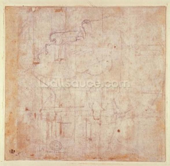 Study of a Head, 1525-26 (black chalk on paper) (verso) (for recto see 191779) mural wallpaper