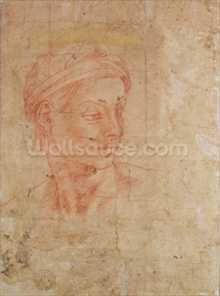 Study of a Head (red chalk on paper) wall mural
