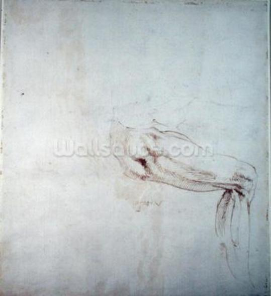 Study of a Leg with Notes (brown ink on paper) (recto) wallpaper mural