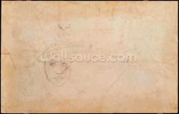 Study of a male head (pencil on paper) (verso) mural wallpaper