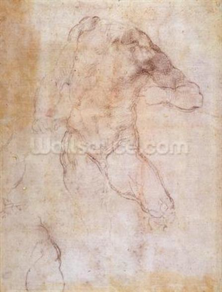 Study of a male nude (charcoal on paper) (recto) (for verso see 192511) wall mural