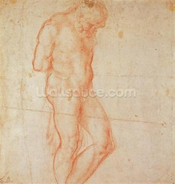 Study of a Nude (red chalk on paper) wall mural