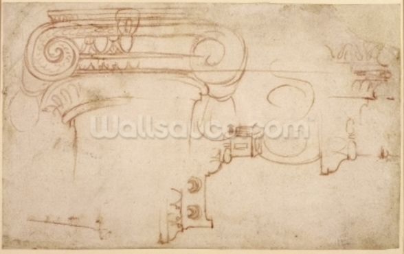 Study of an Ionic capital (red chalk on paper) (recto) wall mural