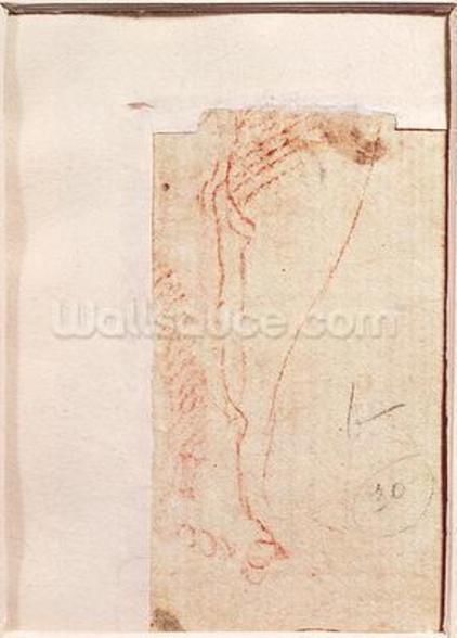 Study of Christs feet nailed to the Cross (red chalk on paper) (verso) mural wallpaper