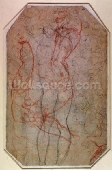 Study of Figures and the Creation of Adam (pencil & red chalk on paper) (verso) mural wallpaper