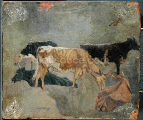 Study of Five Horned Cattle (verso) (oil on millboard) wallpaper mural