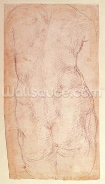 Study of the back of a nude figure (black chalk on paper) (verso) wallpaper mural