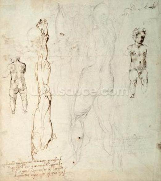 Study of the Christ Child and an Anatomical Drawing with Notes (black chalk & brown ink on paper) (verso) wall mural