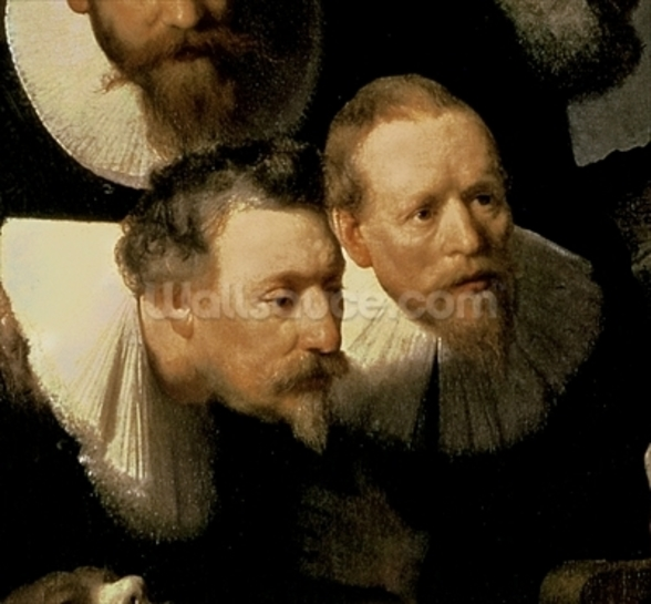 The Anatomy Lesson of Dr. Nicolaes Tulp, 1632 (oil on canvas) (detail of 7543) wallpaper mural