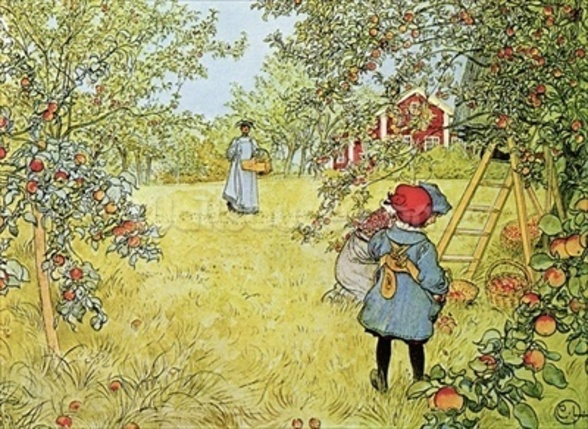 The Apple Harvest mural wallpaper
