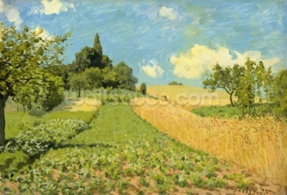 The Cornfield (near Argenteuil) (oil on canvas) wall mural