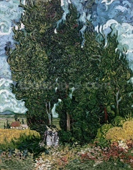 The cypresses, c.1889-90 (oil on canvas) mural wallpaper