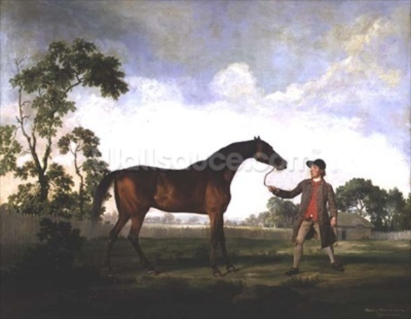 The Duke of Ancasters bay stallion Spectator, held by a groom, c.1762-5 wall mural