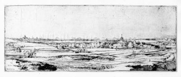 The Goldweighers Field near Haarlem, 1651 (etching) wall mural