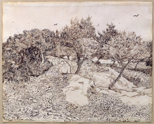 The Olive Trees (pen & ink on paper) mural wallpaper
