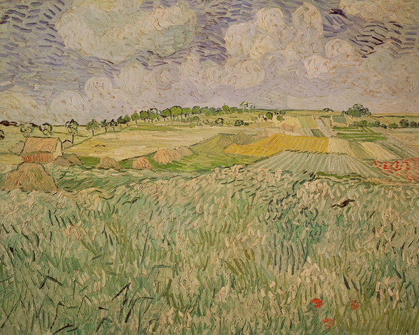 The Plain at Auvers, 1890 (oil on canvas) wall mural