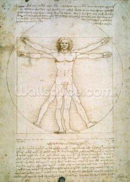 The Proportions of the human figure (after Vitruvius), c.1492 (pen & ink on paper) mural wallpaper
