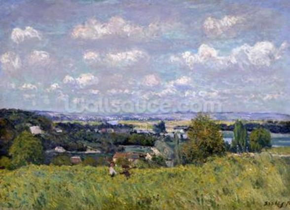 The Valley of the Seine at Saint-Cloud, 1875 (oil on canvas) wall mural