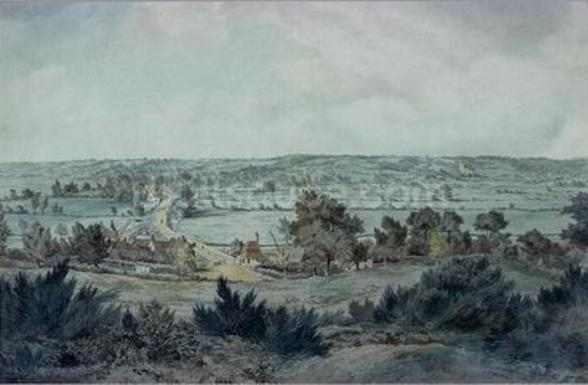 The Valley of the Stour, with Stratford St.Mary in the distance wall mural
