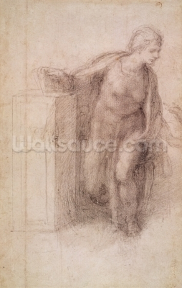 The Virgin Annunciate, c.1546 (black chalk on paper) wallpaper mural