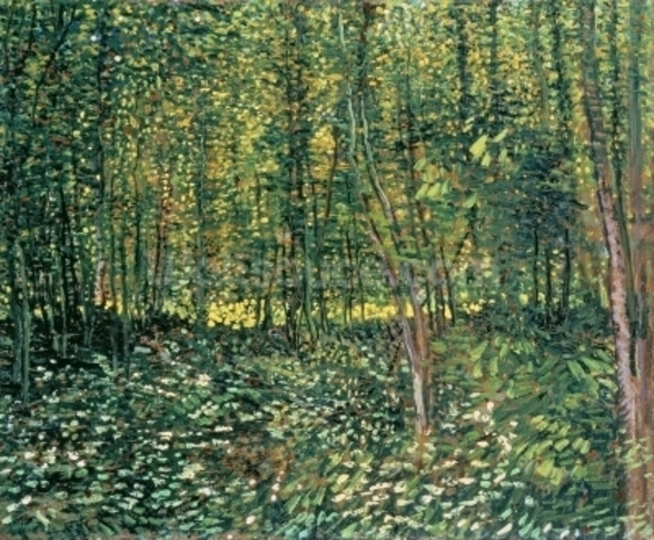 Trees and Undergrowth, 1887 (oil on canvas) mural wallpaper