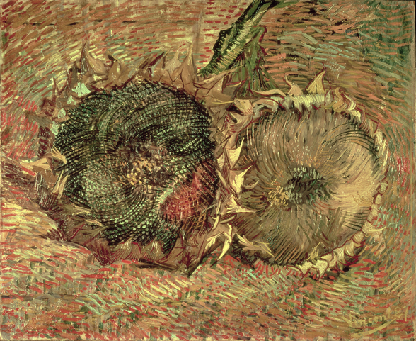Two Cut Sunflowers, 1887 (oil on canvas) wallpaper mural