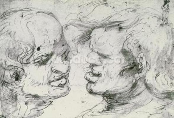 Two Heads (pen and ink on paper) wall mural