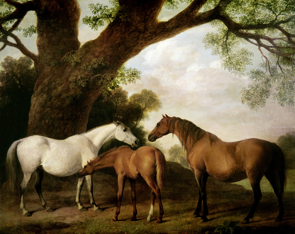 Two Shafto Mares and a Foal, 1774 (oil on panel) mural wallpaper