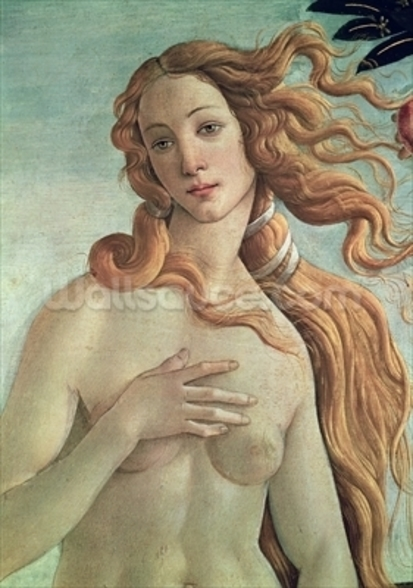 Venus, detail from The Birth of Venus, c.1485 (tempera on canvas) (detail of 412) wall mural