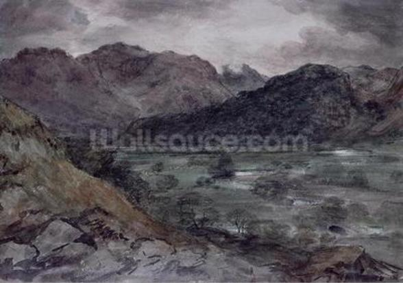 View in Borrowdale (w/c on paper) wall mural