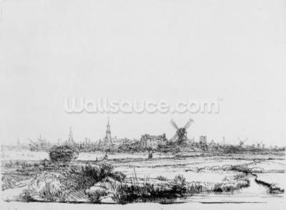 View of Amsterdam, c.1640 (etching) wall mural