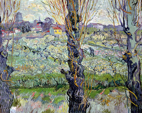 View of Arles, 1889 (oil on canvas) wall mural