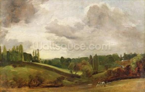 View of East Bergholt, c.1813 (oil on canvas) wall mural