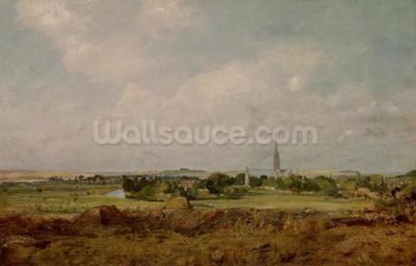 View of Salisbury (oil on canvas) wall mural