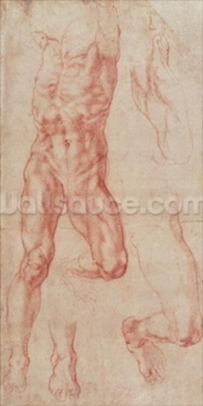 W.13r Study of a male nude, stretching upwards (chalk on paper) mural wallpaper
