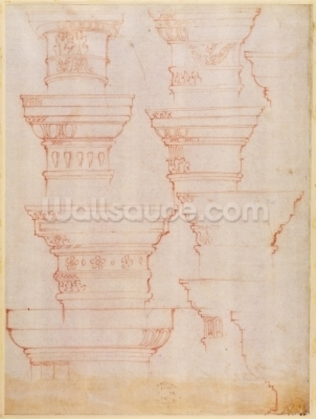 W.18v Study of column capitals (coloured pencil) mural wallpaper