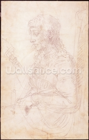 W.40 Sketch of a female figure mural wallpaper