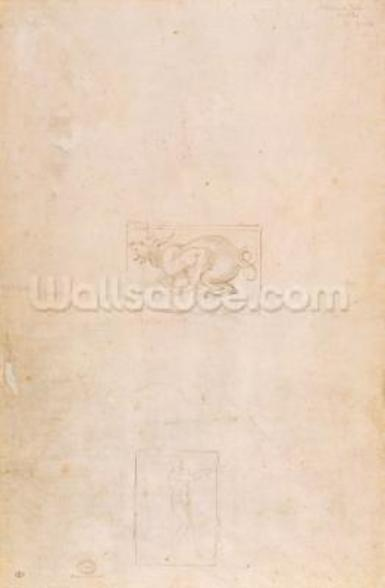 W.54 Study of a dragon mural wallpaper