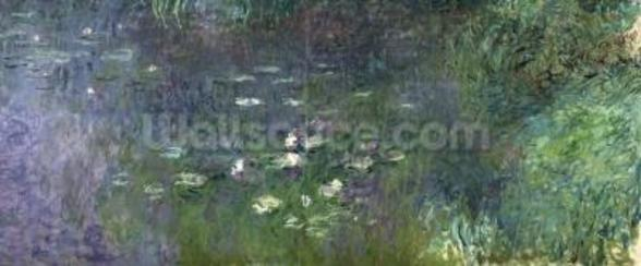 Waterlilies: Morning, 1914-18 (right section) wall mural